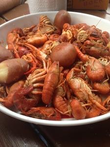 Crawfish Season. . . sorry Dad!